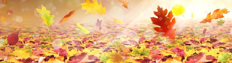 Herbst 184