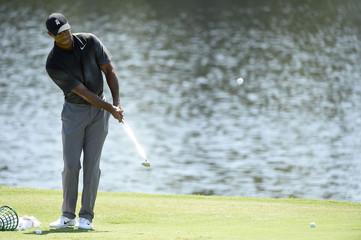 PGA: The Tour Championship - Practice