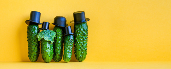 Comical green Cucumbers family on yellow background. Five funny vegetables with black old fashioned hats. Creative design food poster template. Copy space Wall mural