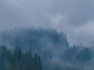 The Carpathian mountains landscape during mist in the autumn season