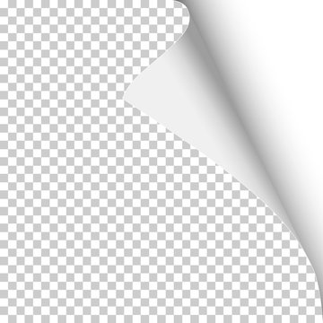 Sheet of transparent paper with curled corner, soft shadow and white background under it. Template paper design. Vector illustration.