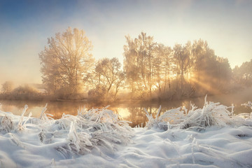 Beautiful winter. Frosty landscape of wild nature with sunbeams. Vivid Christmas landscape. Winter scenery with sun rays through trees. Snowy plants in morning sunlight.