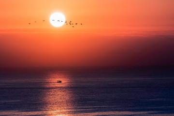 Günbatımında balıkçı teknesi ve kuşlar