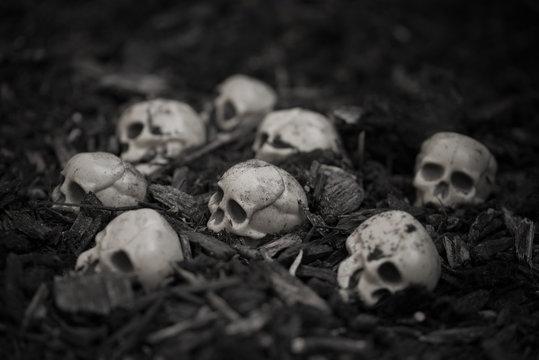 Heap of skulls on ground for halloween design