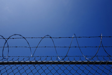 Barbwire fence and blue sky