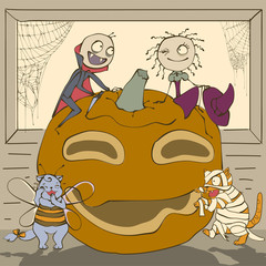 Halloween Masquerade. Vampire and witch on large pumpkin lantern. Cat mummy and funny cat bee