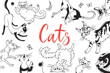 Card with playing cats of different breeds. Cat in the style doodle cartoon. Vector background