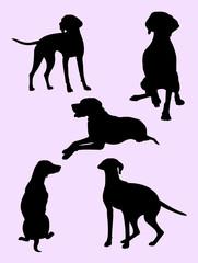 Viszla dog silhouette 01. Good use for symbol, logo, web icon, mascot, sign, or any design you want.