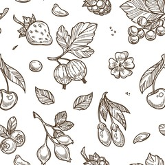 Fruits raspberries and berries sketches seamless pattern vector