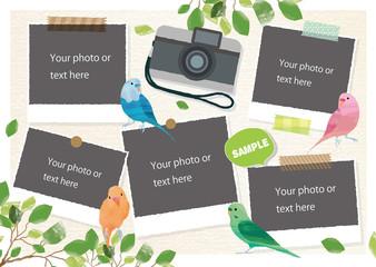 小鳥の写真フレーム