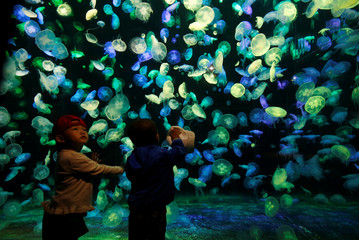 Young visitors stand in front of jellyfish in Zhuhai