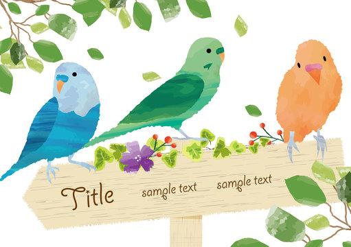 かわいい小鳥のフレーム