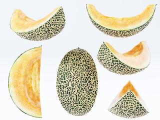 Melon Collection cut pieces isolated on white background.