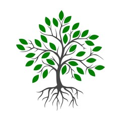Tree and root icon