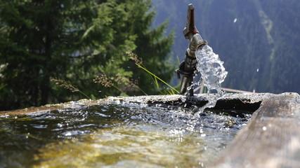 Viehtränke Wasserstelle Wasserhahn