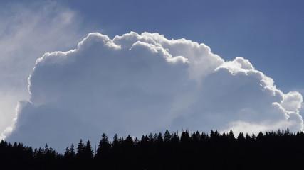 Wolken Himmel Fichten