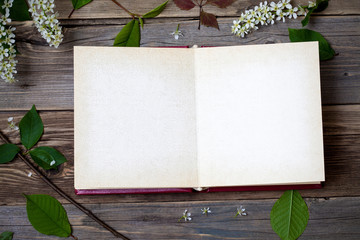 album with open pages and blossom bird-cherry