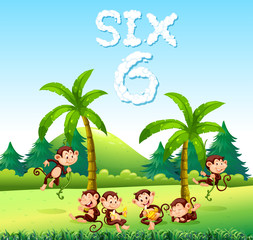 Six monkey in nature