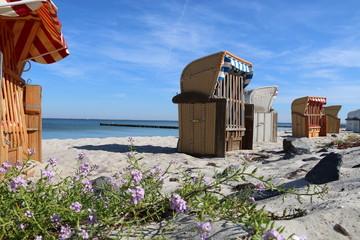 Strand Sandkorb