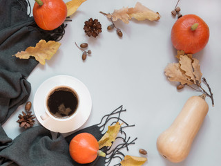 Fall still life, black coffee, gray scarf and pumpkin on pastel background. Top view and copy space.