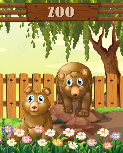 bears in the zoo template stock image and royalty free vector files