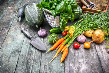 Harvest vegetables with herbs and spices on old wooden board
