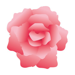 Flower vintage symbol