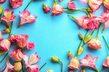 Beautiful blooming flowers on color background