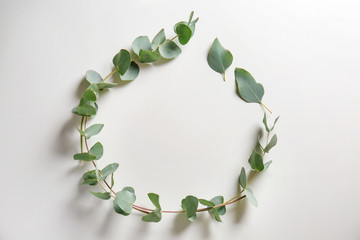 Frame made of with eucalyptus branches on white background