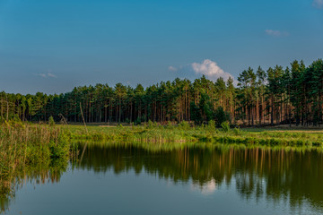 Jezior, Bory Tucholskie