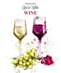 Wine glasses watercolor Vector. Vintage painted style illustrations