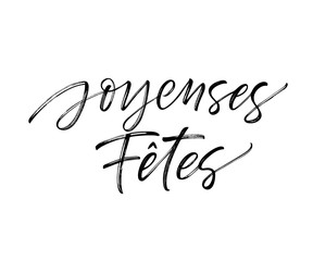 Joyeuses Fêtes French card. Modern vector brush calligraphy. Ink illustration with hand-drawn lettering.