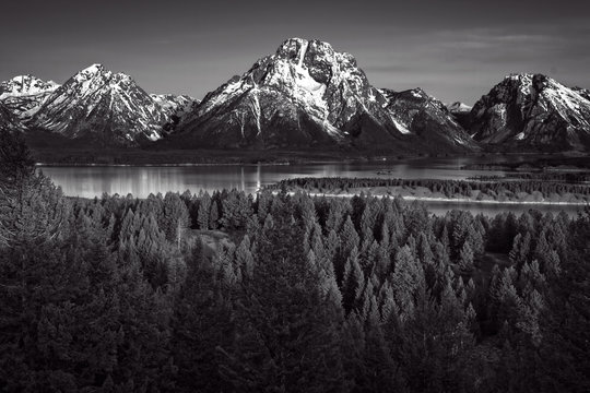 Grand Tetons from Signal Hill Black and White