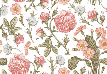 Seamless pattern. Beautiful pink blooming realistic isolated flowers. Vintage background. Rose primrose primula  wildflowers. Wallpaper baroque bouquet. Drawing engraving Vector victorian Illustration