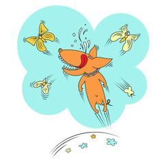Dog and butterflies