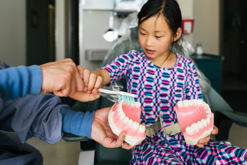 Elementary aged girl learns how to brush teeth model at dentist