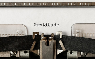 Text Gratitude typed on retro typewriter