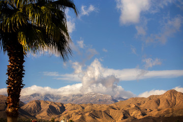 Low hanging clouds over mountains peaks with blurred palm tree in foreground in a springtime California landscape