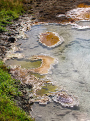 Hot spring in Yellowstone National Park, USA