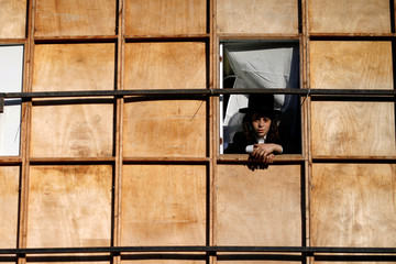 Ultra-Orthodox Jewish boy looks through a window of a ritual booth, known as a sukkah, used during the Jewish holiday of Sukkot, in Ashdod, Israel