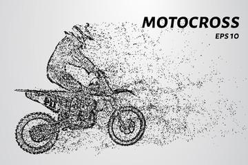 Motocross rider ride. Vector.