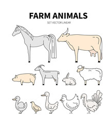 Collection of farm animals including grouse, rabbit , pig, cow, Turkey. Farming icons. Livestock or animal symbols