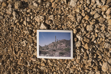 Overhead view of photograph on field at Catalina State Park