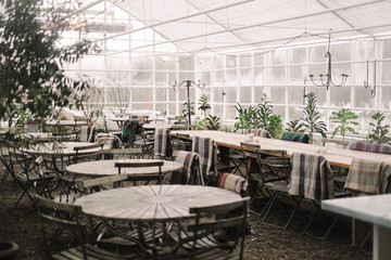 Tables and chairs arranged in greenhouse