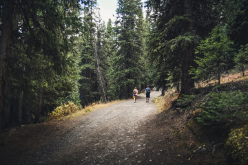 A couple walking on a mountain path in Colorado during fall.
