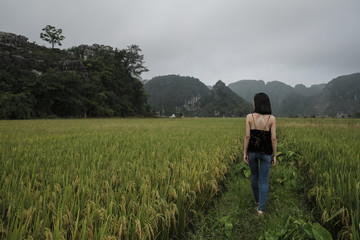Rear view of woman walking amidst agricultural field