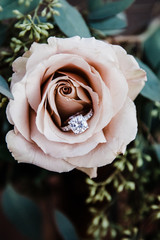 diamond ring in rose