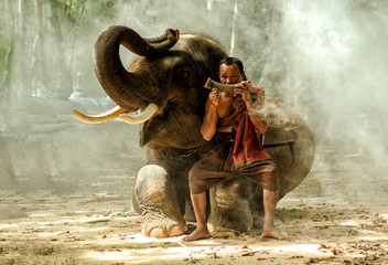 Full length of mahout blowing musical instrument while sitting on elephant's leg in forest