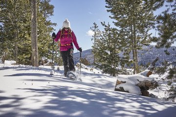 Female hiker walking on snow covered mountain in forest during sunny day