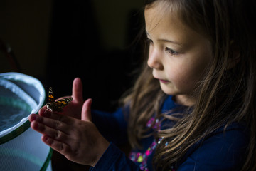 High angle view of girl holding butterfly while standing in darkroom at home